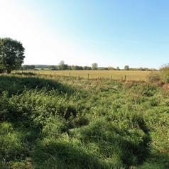 Prairie en amont du Moulin Coleau