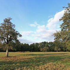 Prairies de la Ferme de Cernay