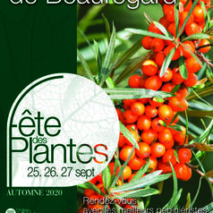 2020-fdplantes-affiche.jpg