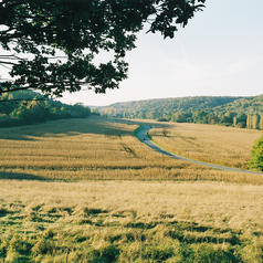 Vallée de l'Yvette