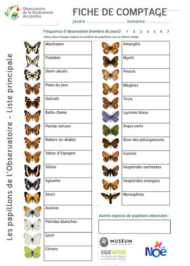 2020_pdf_fiche-comptage-papillon.jpg