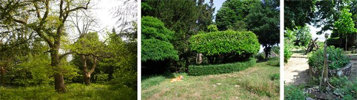 Jardin Ruchot