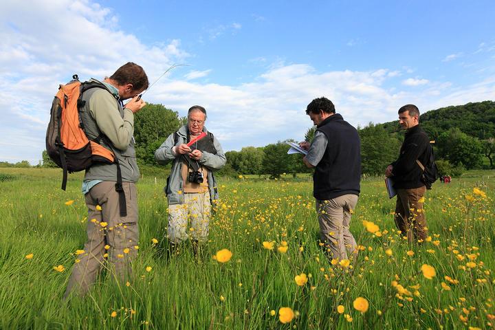 jury concours prairie fleurie