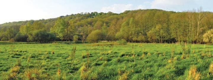 Prairie de la Gravelle