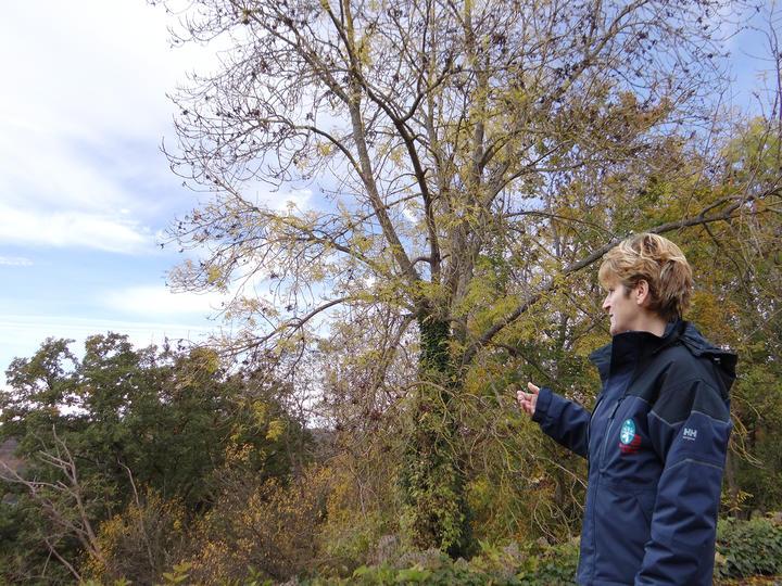 visites guidées réserves naturelles