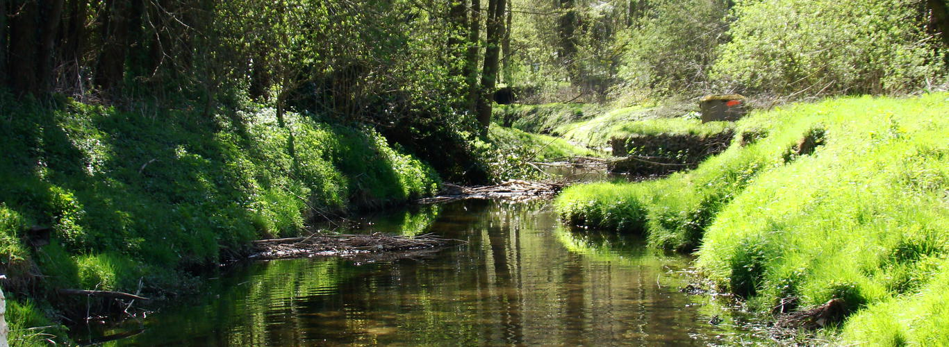Dampierre en yvelines au coeur de la vall e de chevreuse for Parc naturel yvelines