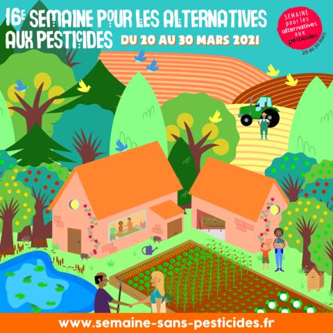 2021-alternative-_instagram3.png