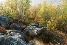 paysages vaux de cernay