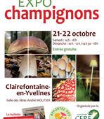 expo-champignons-2017.jpg