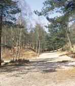 sentier marechaux