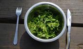 assiette plantes sauvages