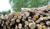 chauffage bois buche