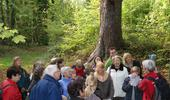 Balade Guides de Parc